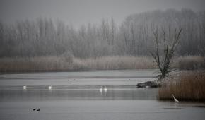 Randmeren Winterlandschap